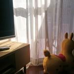 直接光と間接光。河内長野市・10月朝。