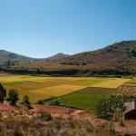 土地を高く売却する方法 ~土地を買い取りますという買取り業者に査定依頼をする前に~